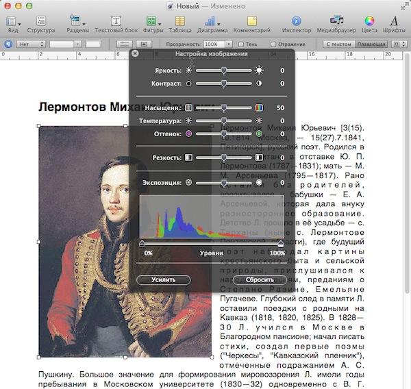 Pages включает в себя базовые инструменты для редактирования изображений, что позволяет настроить его, не открывая во внешнем редакторе.